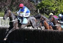 best horse racing bookmaker