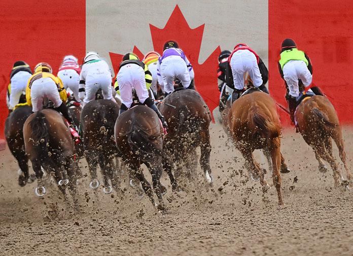 Canada woodbine horse racing betting superbowl betting sites